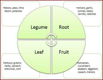 Crop rotation diagram