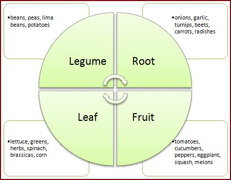 Crop rotation diagram