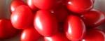 IMG_20151116_151503Roma tomatoes 2