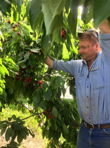 IMG_1135-Boris and Cherry tree