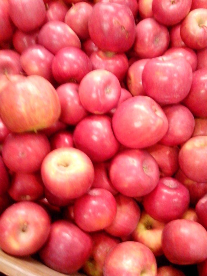 IMG_20151205_075256-Apples