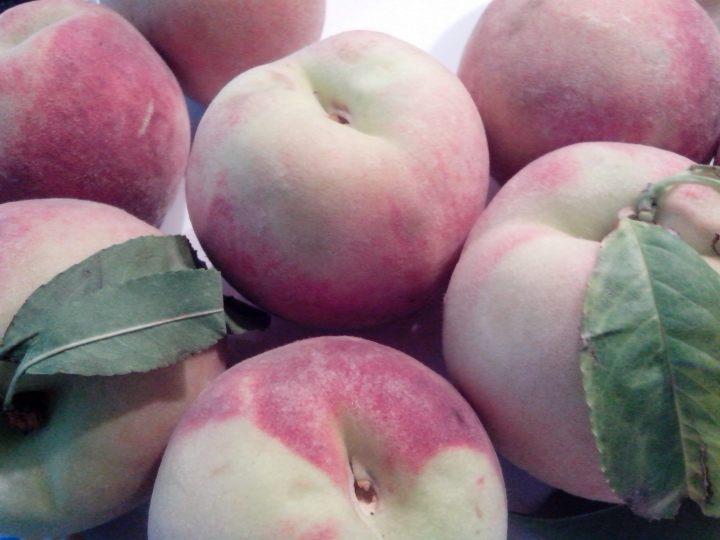 IMG_20151220_110502-Peaches
