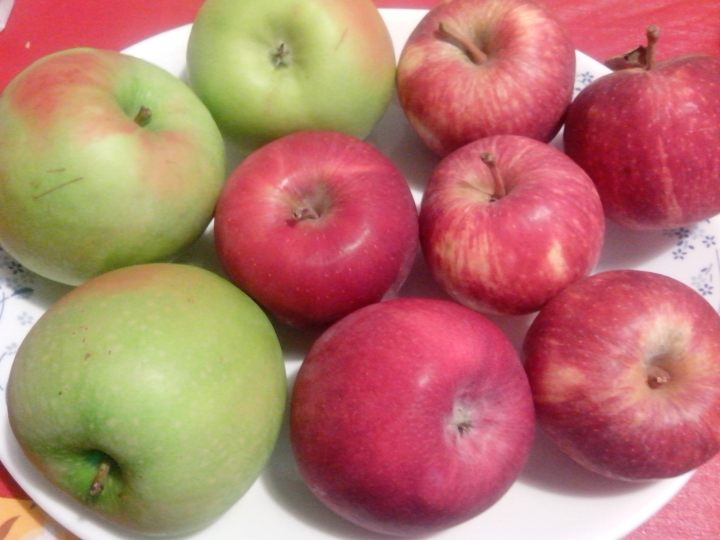 IMG_20151220_161905-apple varieties