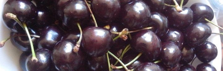 IMG_20151220_110141-dark cherries 2