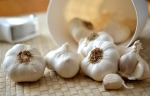 garlic-545223_1920-garlic picture
