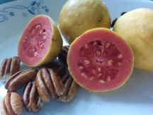 IMG_20160420_155631-fresh guava and pecan