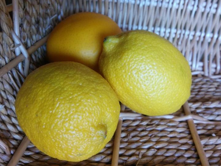 IMG_20160511_105754-Lemons