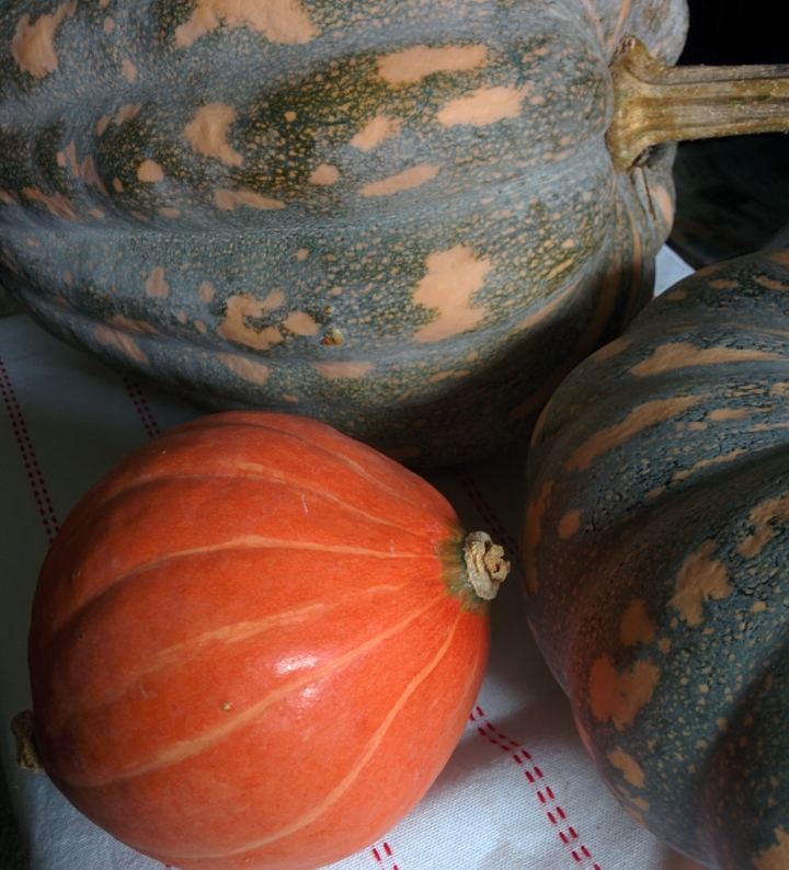 IMG_20160515_104904-Autumn pumpkins