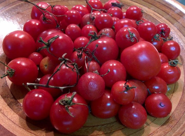 IMG_20160601_140115-Cherry Tomatoes