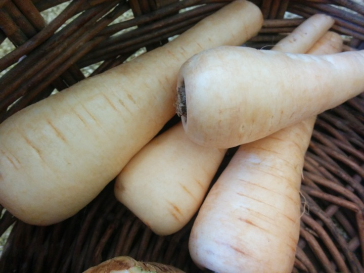 IMG_20160728_122203-Parsnips