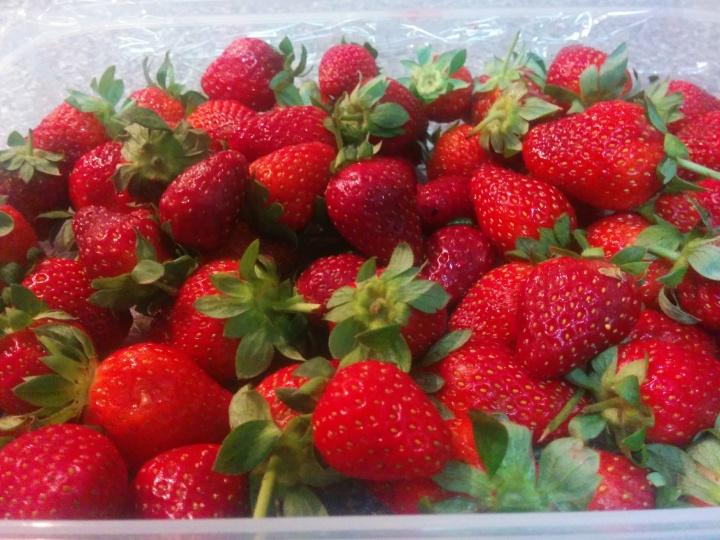 img_20160919_224337-strawberry-4