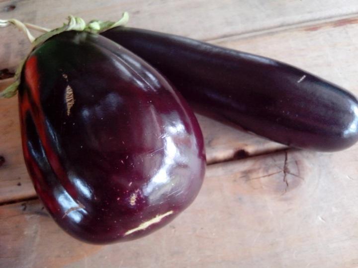 img_20160102_120532-eggplants-from-garden