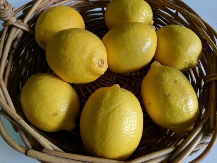 IMG_20170410_162635-Lemons