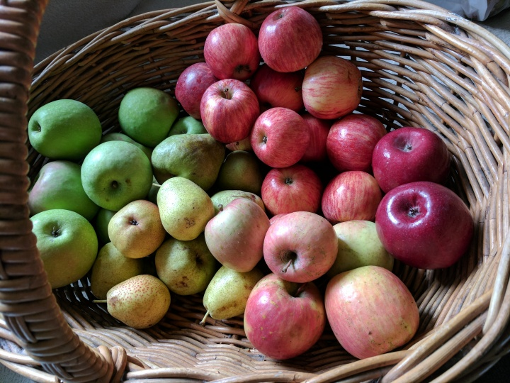 IMG_20170520_092948-Basket of apples and pears