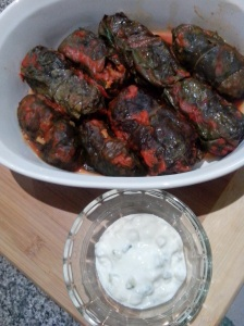 IMG_20151115_215624 -Silverbeet Dolmades and Tzaziki