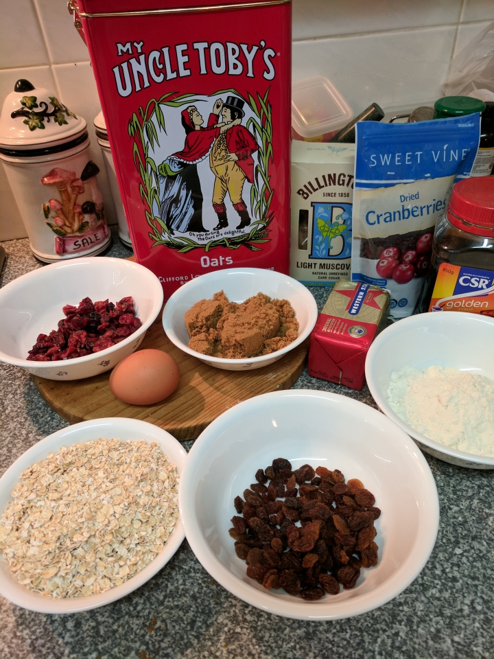 IMG_20170912_105307-Oat and cranberry ingredients