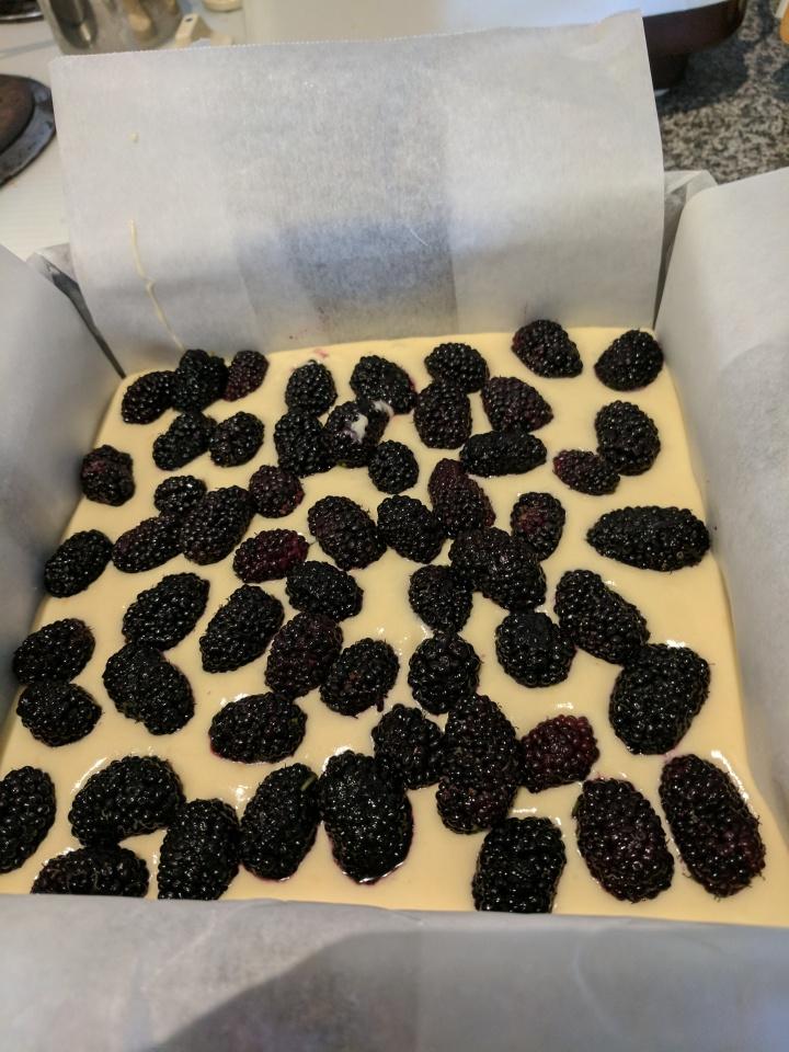IMG_20171016_162244-Mulberries on batter