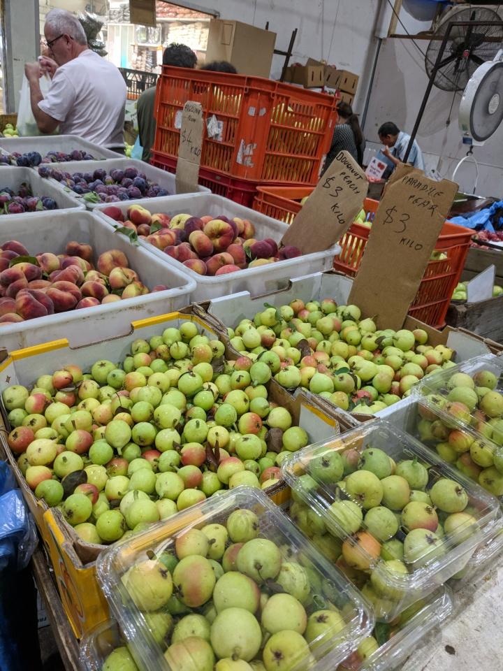 IMG_20180210_075809-Fruit 4