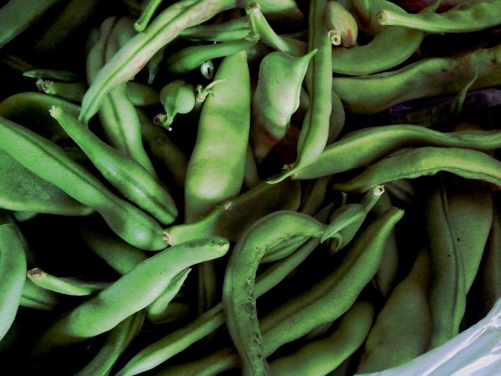 IMG_20160102_120506-Green Beans