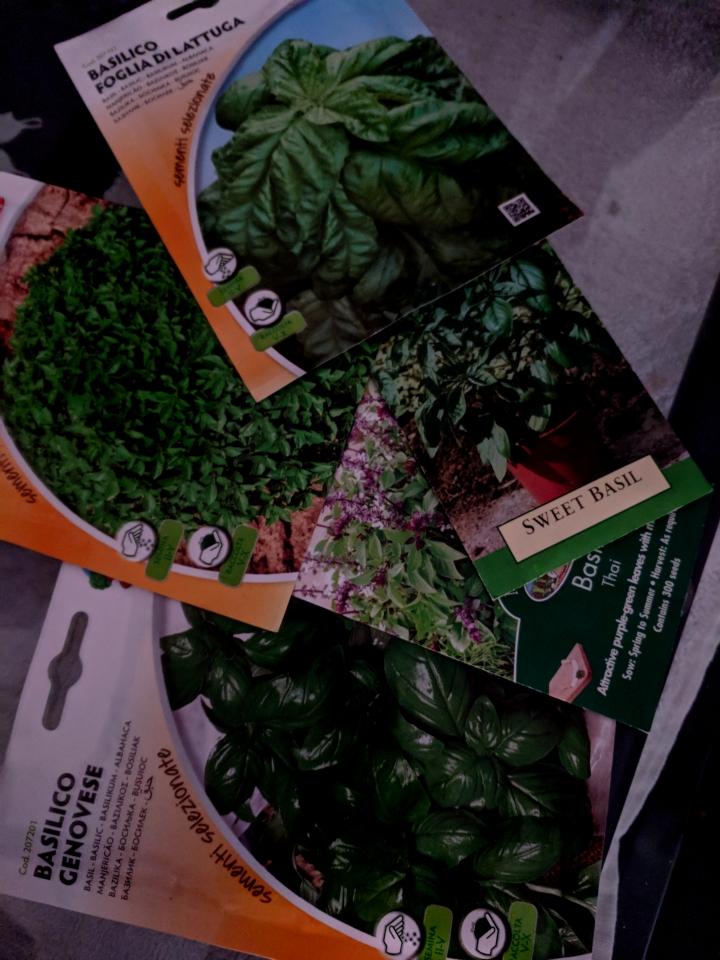 IMG_20180703_130510-Basil seeds
