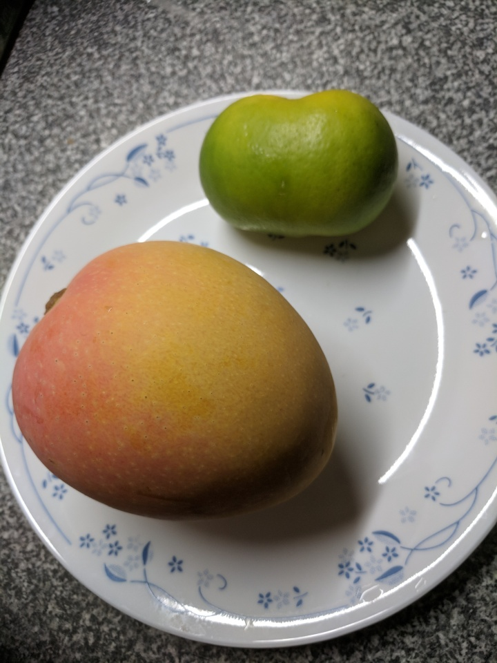 IMG_20180302_125531-siamese lime and mango