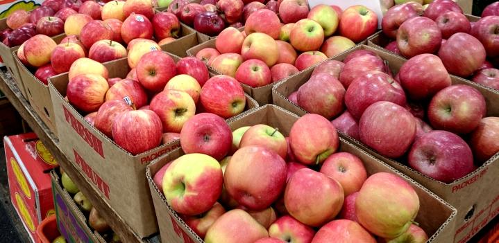 IMG_20180901_124515-Apples September-18