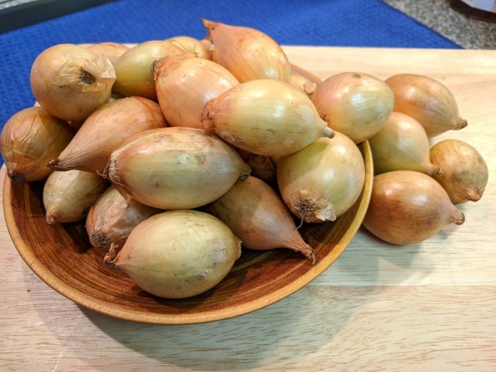 IMG_20180904_120355-Pickling onions