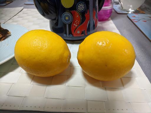 Lemons-2020-07-25