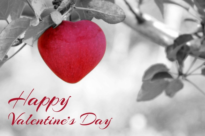 valentines-day-1186304_1920