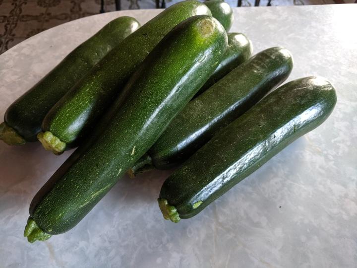 IMG_20190616_095949-Zucchini large