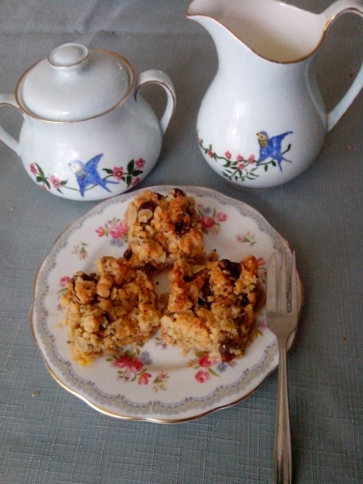 IMG_20151121_181954-Sandra's Oat and Cranberry slice