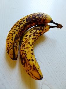 Over ripe bananas2-754377_1920