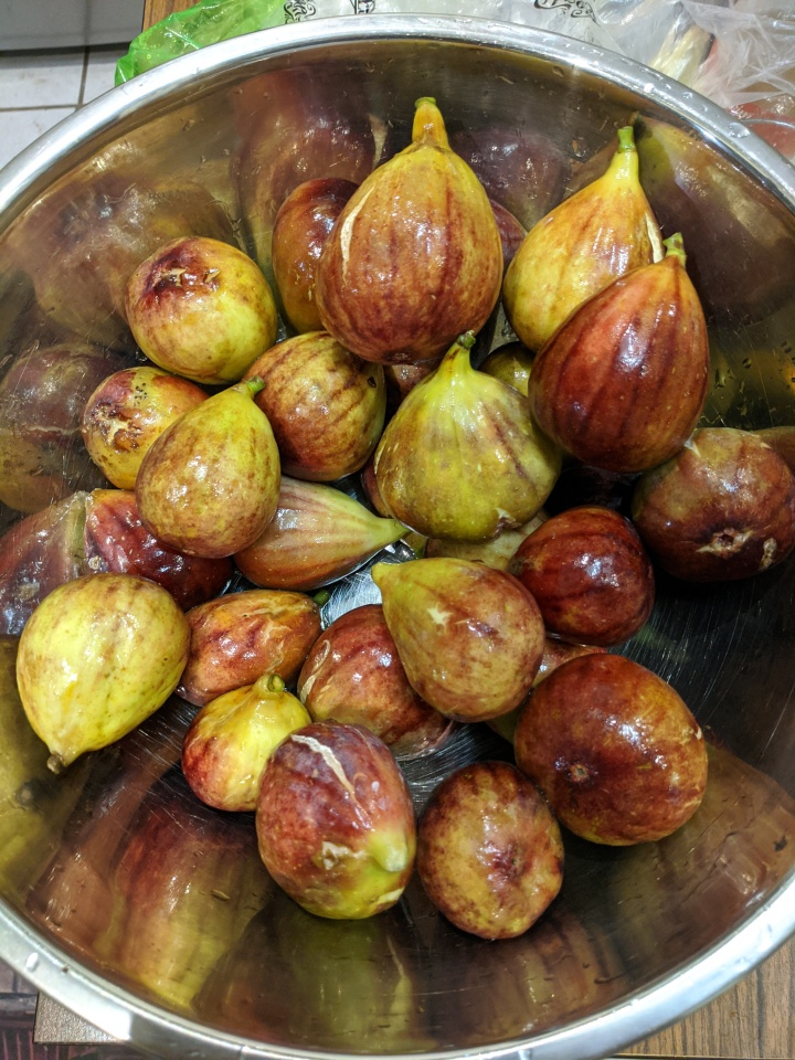 IMG_20210221_195737-Figs in bowl